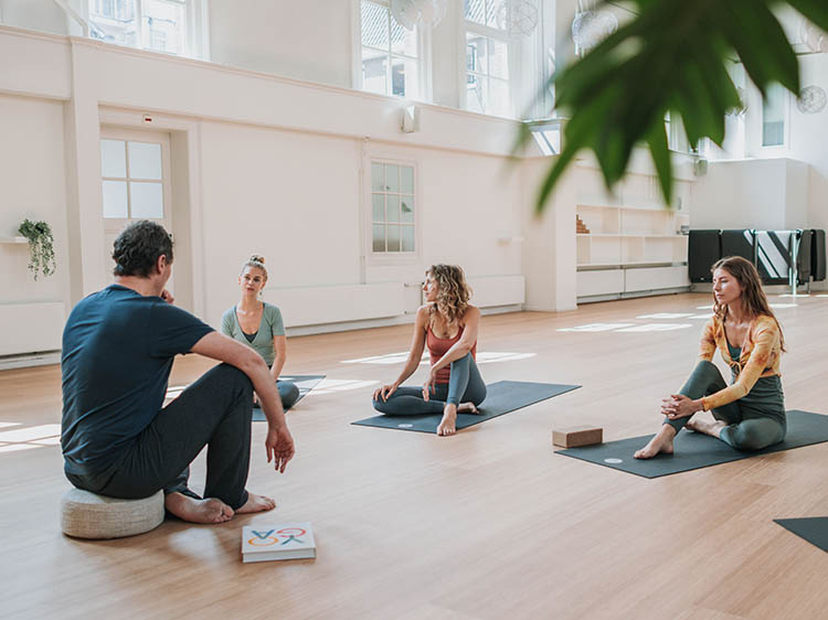 1. johan noorloos online vinyasa yoga opleiding-kl