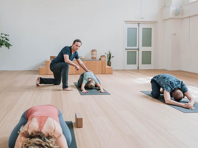 5. online opleiding vinyasa yoga-kl