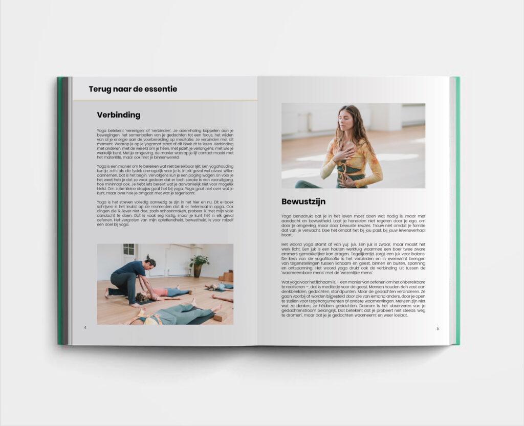 e-boek-basistraining-yoga-johan-noorloos-