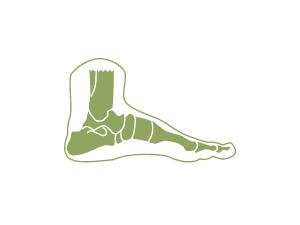 2DNYS-Online-yin-yoga-opleiding-symbool - anatomie
